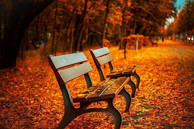 lavičky v parku