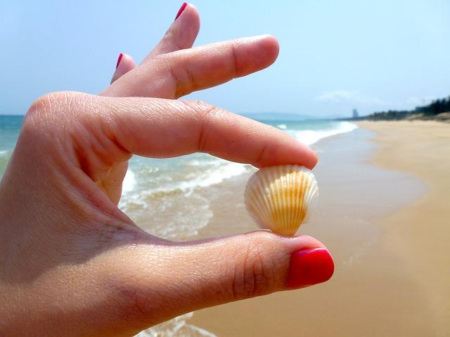 mušlička z moře