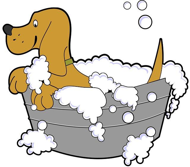 koupel psa